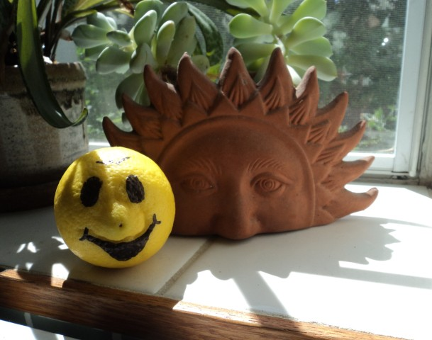 lemons life laughter International Happiness Day