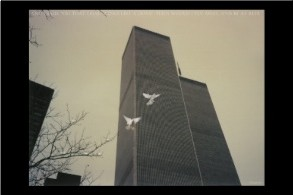 9/11, twin towers, WTC, peace, dove